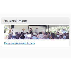 add featured image function to wordpress theme