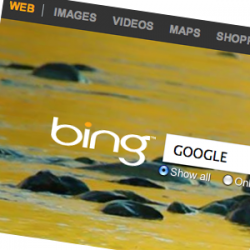 prepare your website to be indexed by google and bing